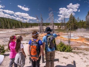 Yellowstone and Grand Teton Road Trip from Denver